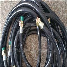LCNG-g15×1000防爆挠性连接管