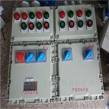 10回路防爆照明配电箱 IIBT4