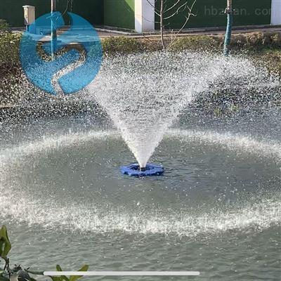 方式喷泉式曝气机维护