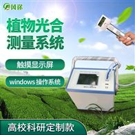 FT-GH30-1光合作用测定仪品牌
