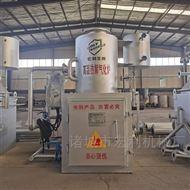 HLPG-30-2焚烧炉塑料工业垃圾热解气化炉厂家