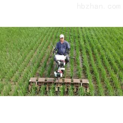 日本otake稻田除草机