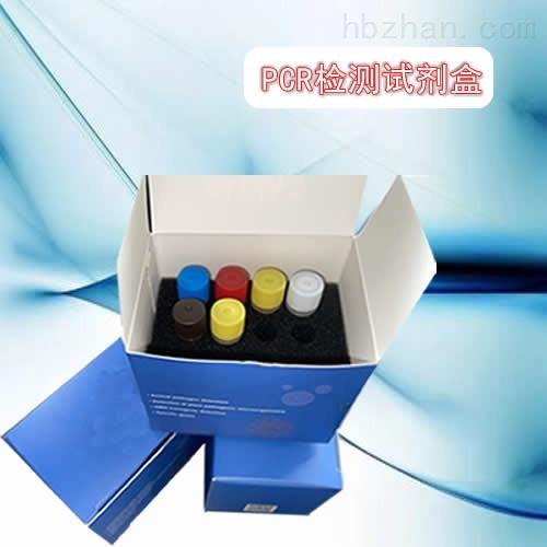 猪胸膜肺炎放线杆菌LAMP试剂盒