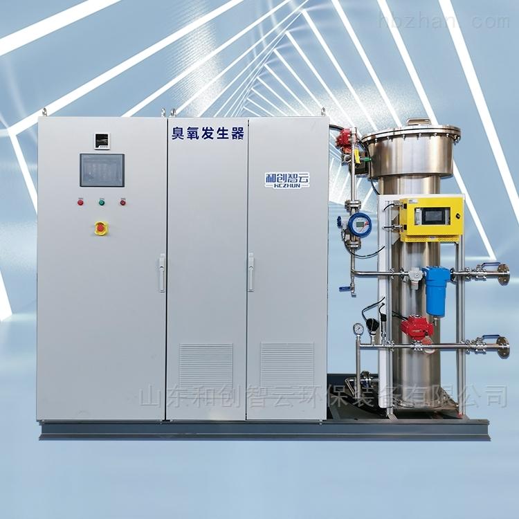 污水处理厂用大型臭氧发生器
