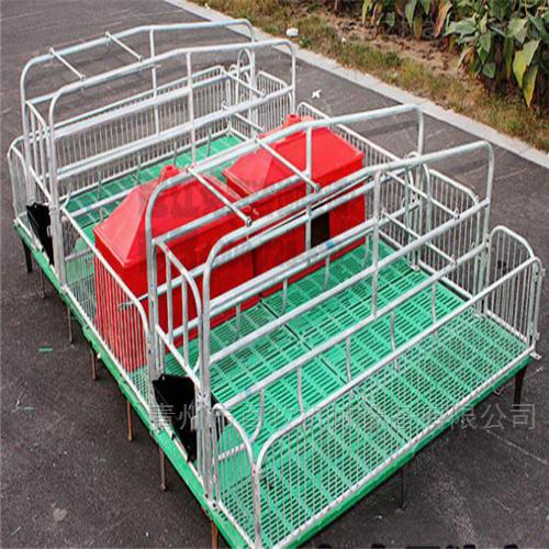 2021新型猪用复合板限位栏-母猪产床