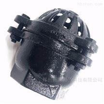H12X铸铁止回阀丝扣底阀
