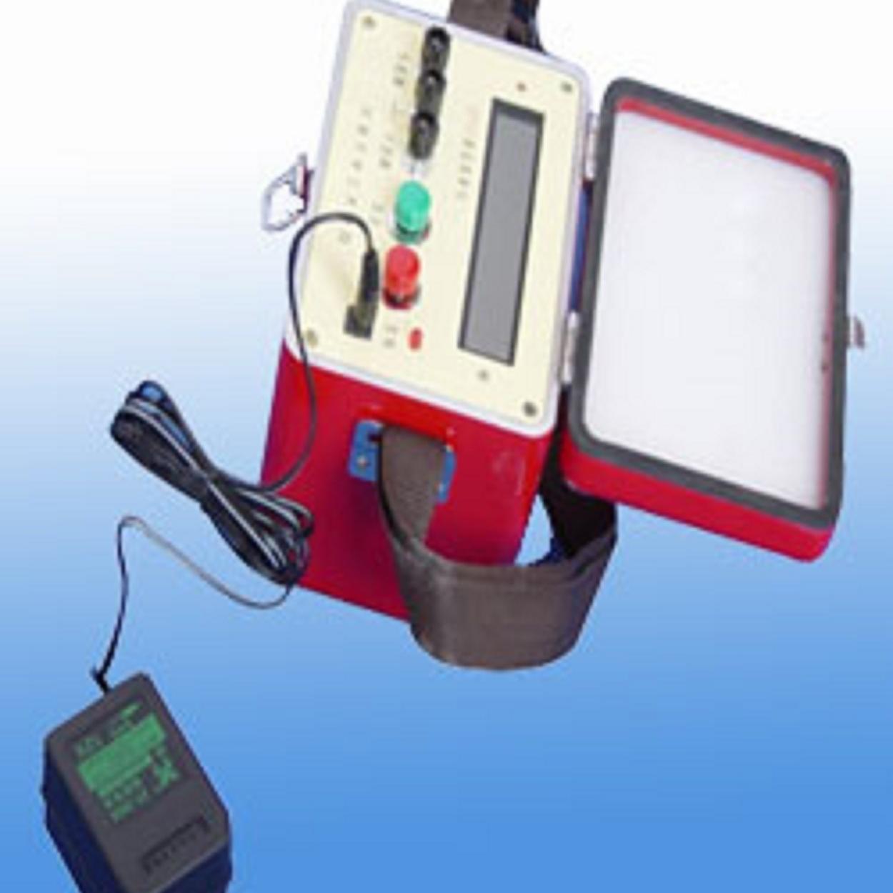 振弦式频率测定仪TD-XPO2