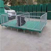 养殖设备欧式母猪产床