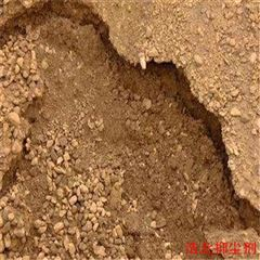 煤炭矿山结壳抑尘剂
