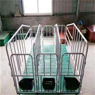 大型猪场限位栏定制