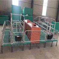 小型猪猪用保育床直销
