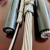 JL/G1A钢芯铝绞线240/30生产厂家