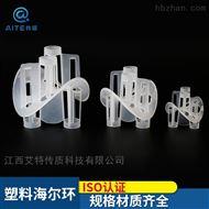 50-76-100尾气吸收塔用PP海尔环填料