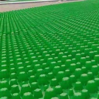防护虹吸排水板