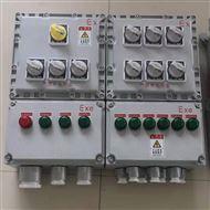 户外防爆照明动力配电箱
