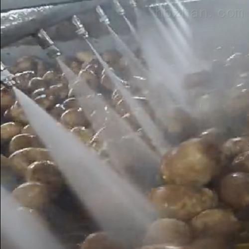 马铃薯在线清洗设备