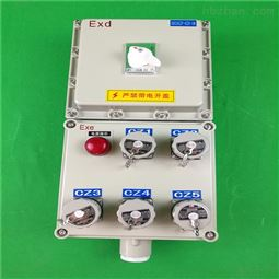 防爆动力检修电源插座箱带总开关控制水泵