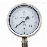 YB-100无锡专业优质不锈钢压力表