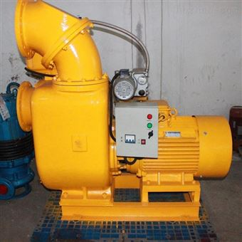 EQZSW大排量自吸水泵