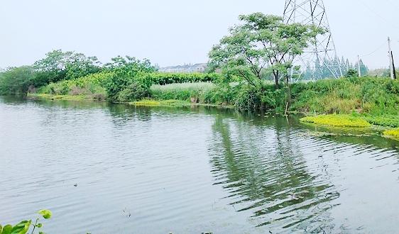 深圳环保科技集团获批设立华南首家国家环境保护工程技术中心