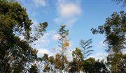 生態環境部:我國的氣候變化立法在推動過程中