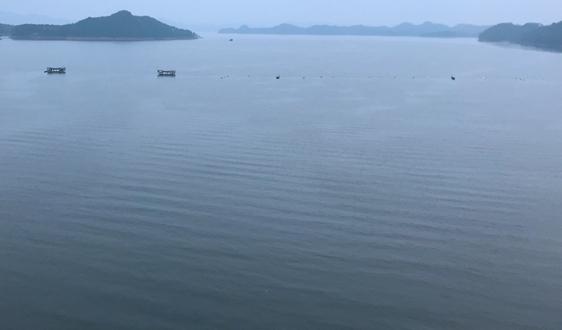 水利部、河北省人民政府聯合啟動2021年夏季滹沱河、大清河生態補水