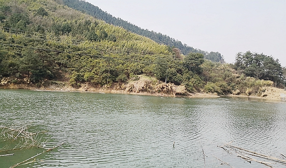 2021年中国及31省市农村污水处理行业政策汇总及解读