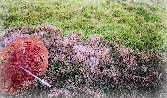 天津市生态环境局关于公开征求天津市声环境功能区划分及调整方案(征求意见稿)意见的通知
