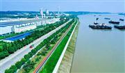 深化長江大保護 宜昌三峽生態水管家公司成立