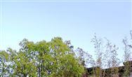 长江环保集团与苏州市吴中区签署共抓长江大?;ず献骺蚣苄?/></a> <p>9月29日,长江环保集团与苏州市吴中区人民政府签署共抓长江大?;ず献骺蚣苄?,此次合作将进一步改善长江流域的生态环境。<a href=