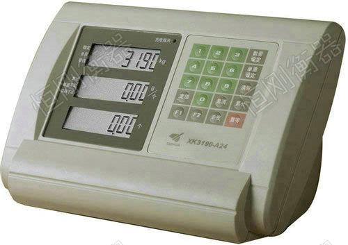XK3190-A24地磅显示器