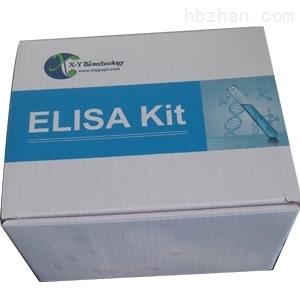 E2定量elisa试剂盒