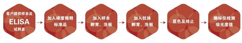 人抗酒石酸酸性磷酸酶5bTRACPELISA试剂盒