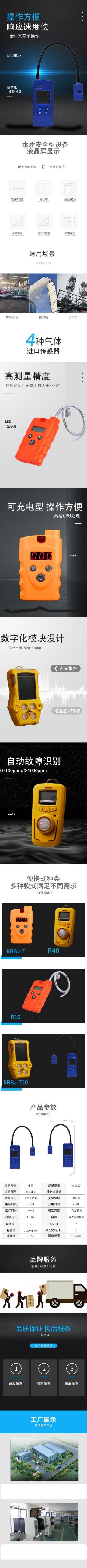 便携式气体检测仪 (1).jpg