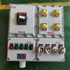 BXX52-防爆检修电源插座箱IIB IIC操作箱
